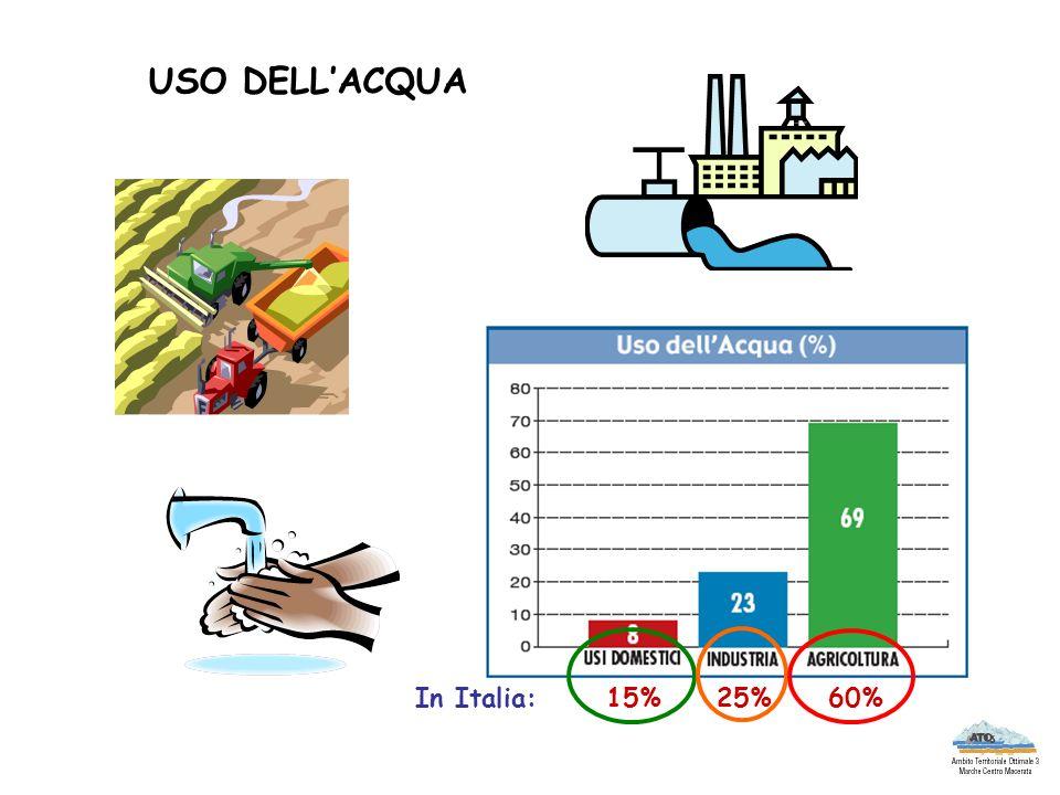 USO DELLACQUA In Italia: 15% 25% 60%