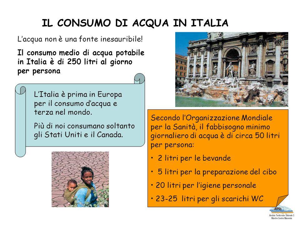 IL CONSUMO DI ACQUA IN ITALIA Lacqua non è una fonte inesauribile! Il consumo medio di acqua potabile in Italia è di 250 litri al giorno per persona L