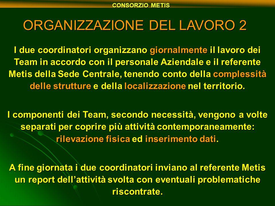 CONSORZIO METIS ORGANIZZAZIONE DEL LAVORO 2 I due coordinatori organizzano giornalmente il lavoro dei Team in accordo con il personale Aziendale e il