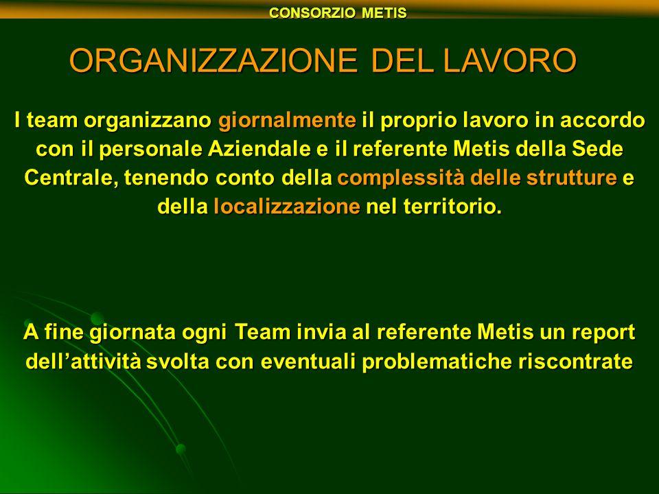 CONSORZIO METIS ORGANIZZAZIONE DEL LAVORO I team organizzano giornalmente il proprio lavoro in accordo con il personale Aziendale e il referente Metis