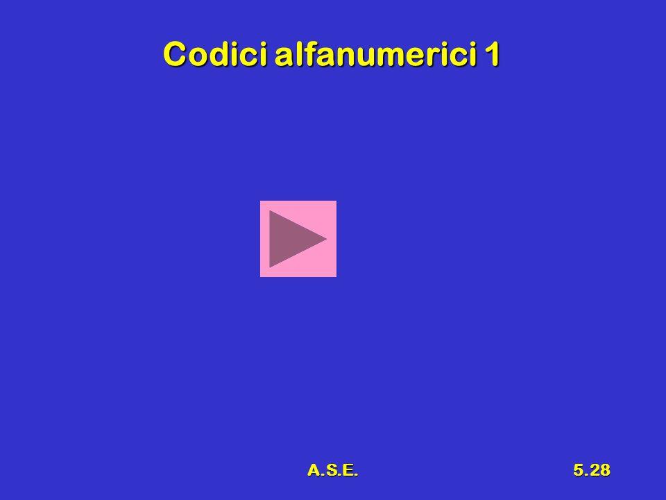A.S.E.5.28 Codici alfanumerici 1