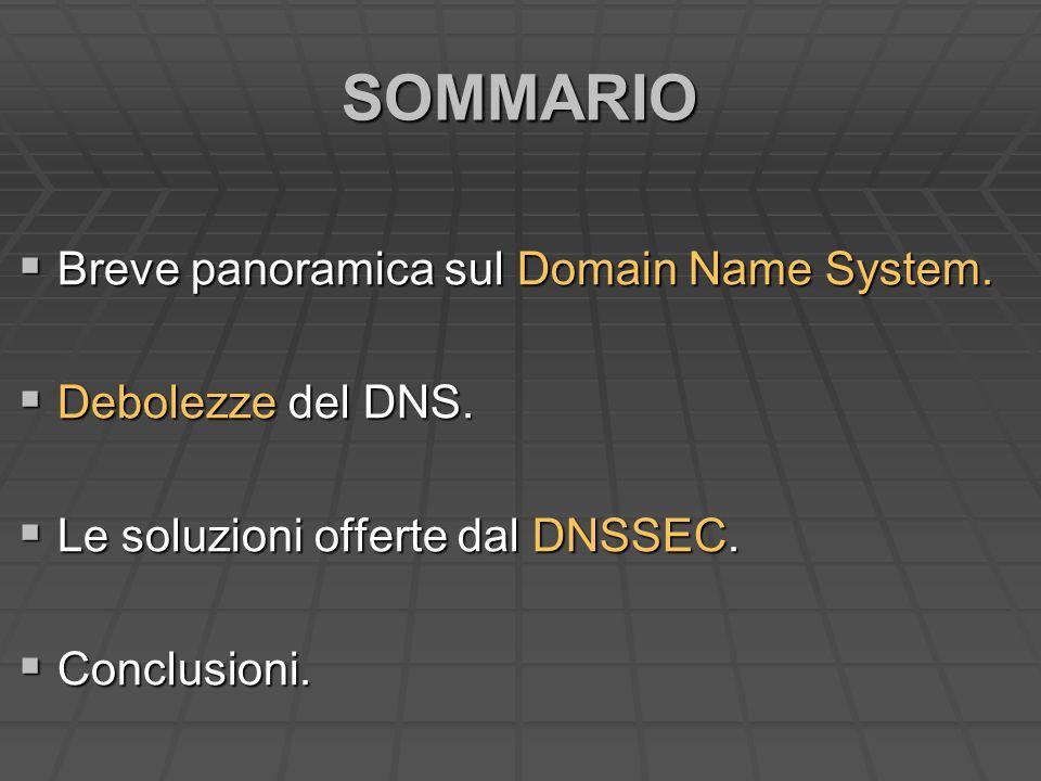SOMMARIO Breve panoramica sul Domain Name System. Breve panoramica sul Domain Name System. Debolezze del DNS. Debolezze del DNS. Le soluzioni offerte