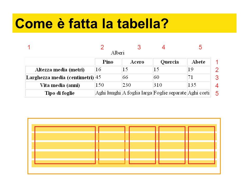 Codice Vanno inserite: 5 righe: 5 celle: