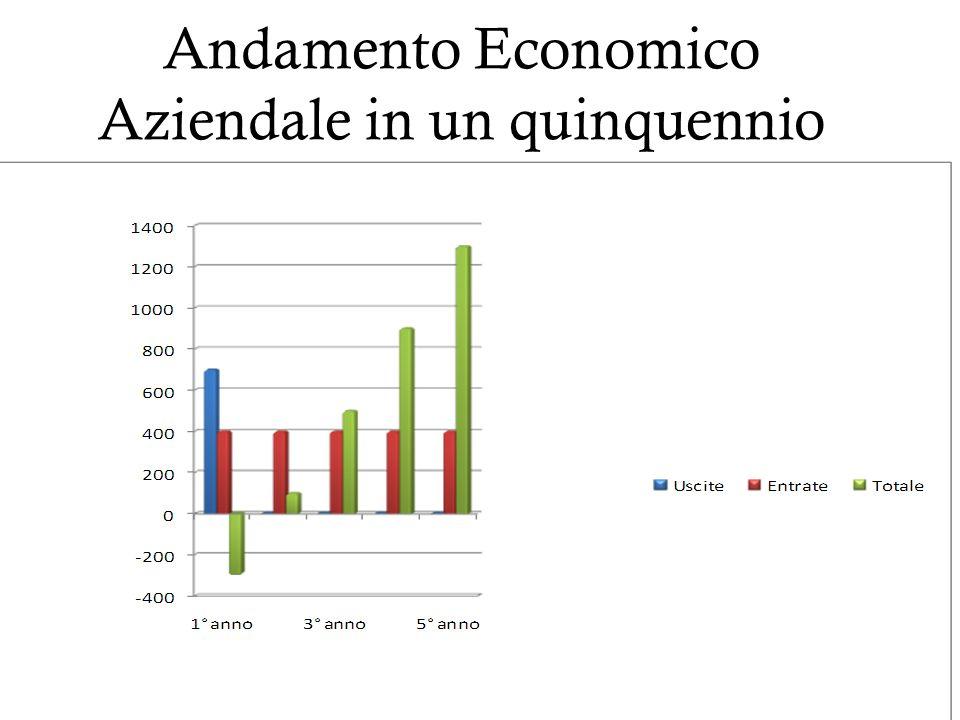 Andamento Economico Aziendale in un quinquennio