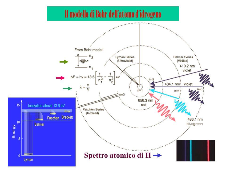 Il modello di Bohr dellatomo didrogeno Spettro atomico di H