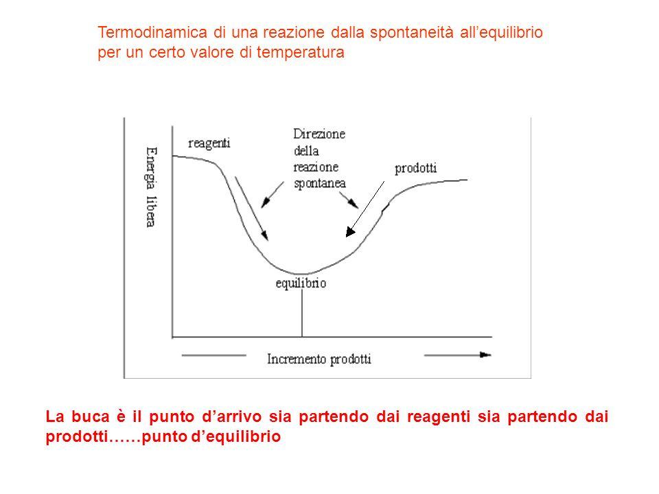 Termodinamica di una reazione dalla spontaneità allequilibrio per un certo valore di temperatura La buca è il punto darrivo sia partendo dai reagenti