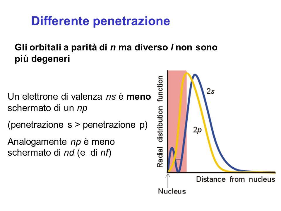 Differente penetrazione Un elettrone di valenza ns è meno schermato di un np (penetrazione s > penetrazione p) Analogamente np è meno schermato di nd