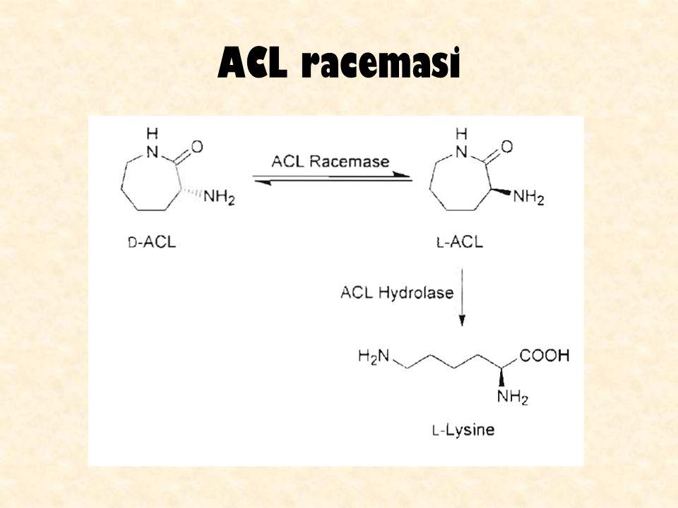 Xilosio isomerasi