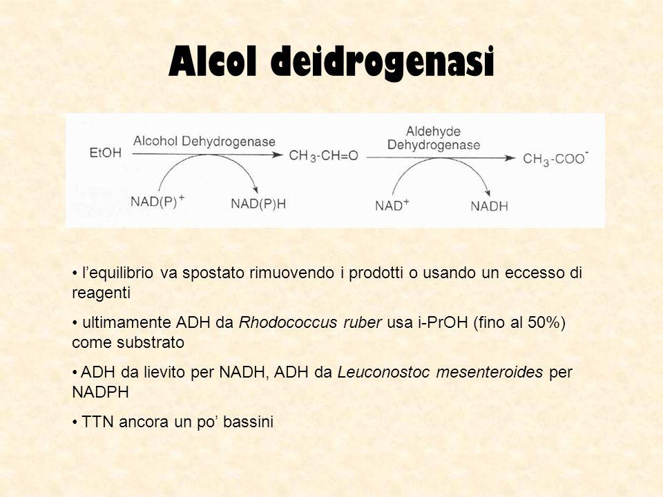 Alcol deidrogenasi lequilibrio va spostato rimuovendo i prodotti o usando un eccesso di reagenti ultimamente ADH da Rhodococcus ruber usa i-PrOH (fino