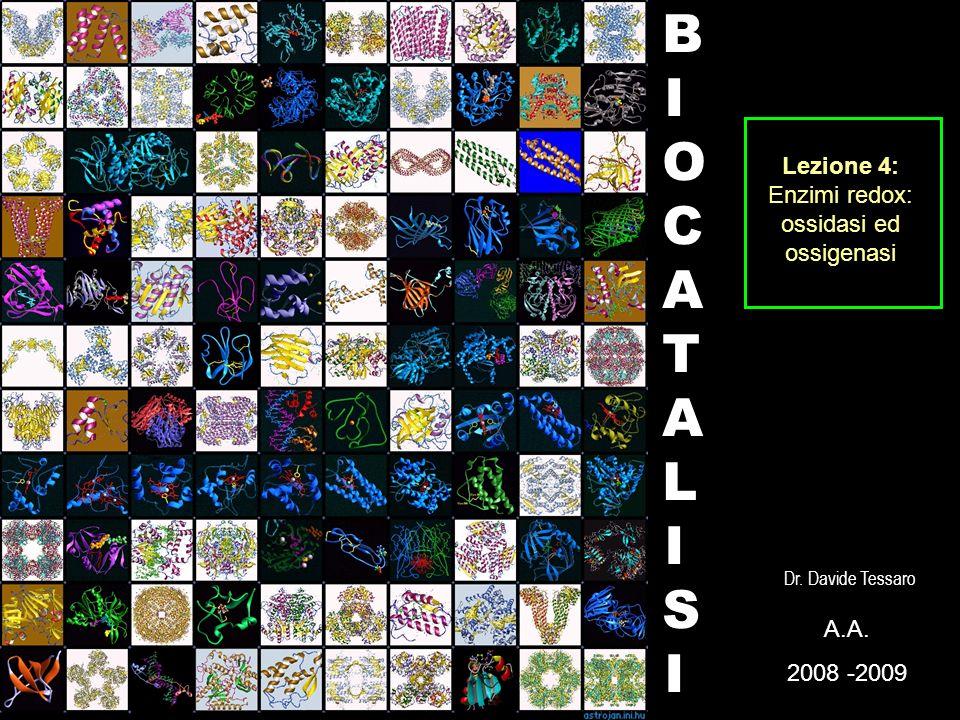 BIOCATALISIBIOCATALISI A. 2008 -2009 Dr. Davide Tessaro Lezione 4: Enzimi redox: ossidasi ed ossigenasi