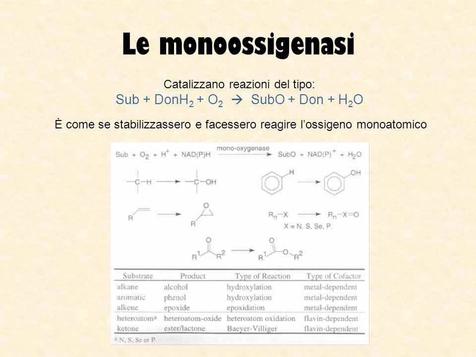 Le monoossigenasi Catalizzano reazioni del tipo: Sub + DonH 2 + O 2 SubO + Don + H 2 O È come se stabilizzassero e facessero reagire lossigeno monoato