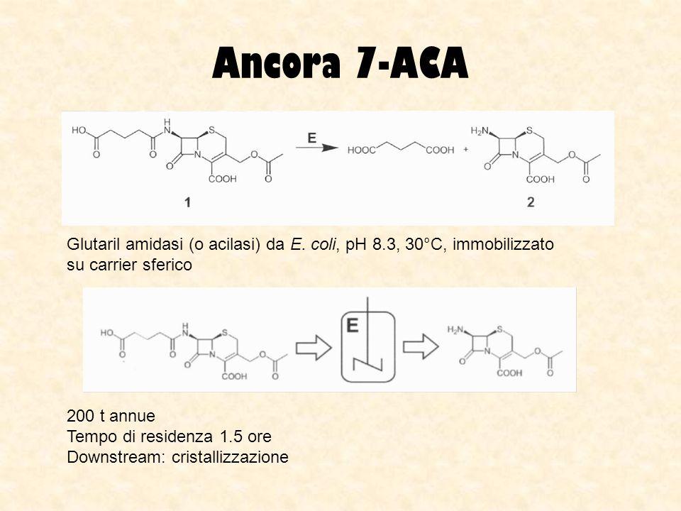 Ancora 7-ACA Glutaril amidasi (o acilasi) da E. coli, pH 8.3, 30°C, immobilizzato su carrier sferico 200 t annue Tempo di residenza 1.5 ore Downstream