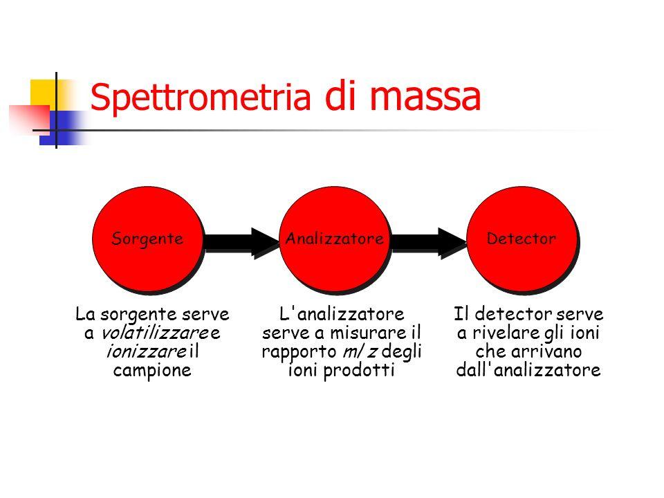 Spettrometria di massa Sorgente La sorgente serve a volatilizzare e ionizzare il campione Analizzatore L'analizzatore serve a misurare il rapporto m/z