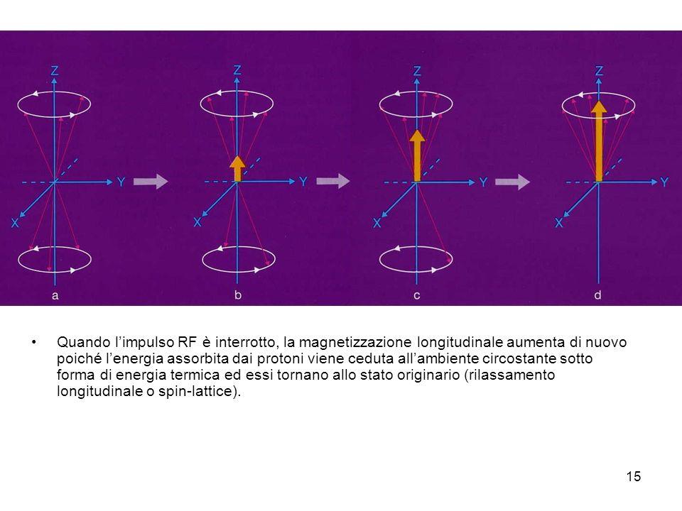 15 Quando limpulso RF è interrotto, la magnetizzazione longitudinale aumenta di nuovo poiché lenergia assorbita dai protoni viene ceduta allambiente circostante sotto forma di energia termica ed essi tornano allo stato originario (rilassamento longitudinale o spin-lattice).