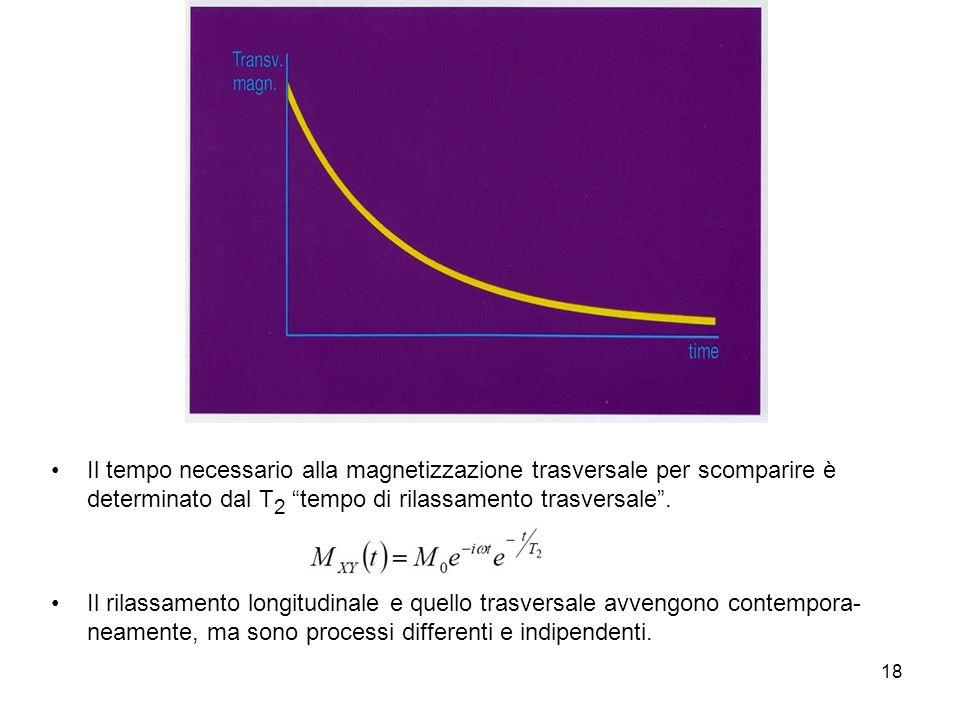 18 Il tempo necessario alla magnetizzazione trasversale per scomparire è determinato dal T 2 tempo di rilassamento trasversale.