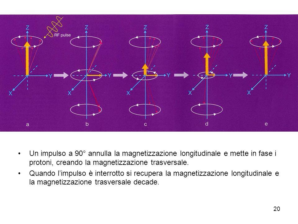 20 Un impulso a 90° annulla la magnetizzazione longitudinale e mette in fase i protoni, creando la magnetizzazione trasversale.