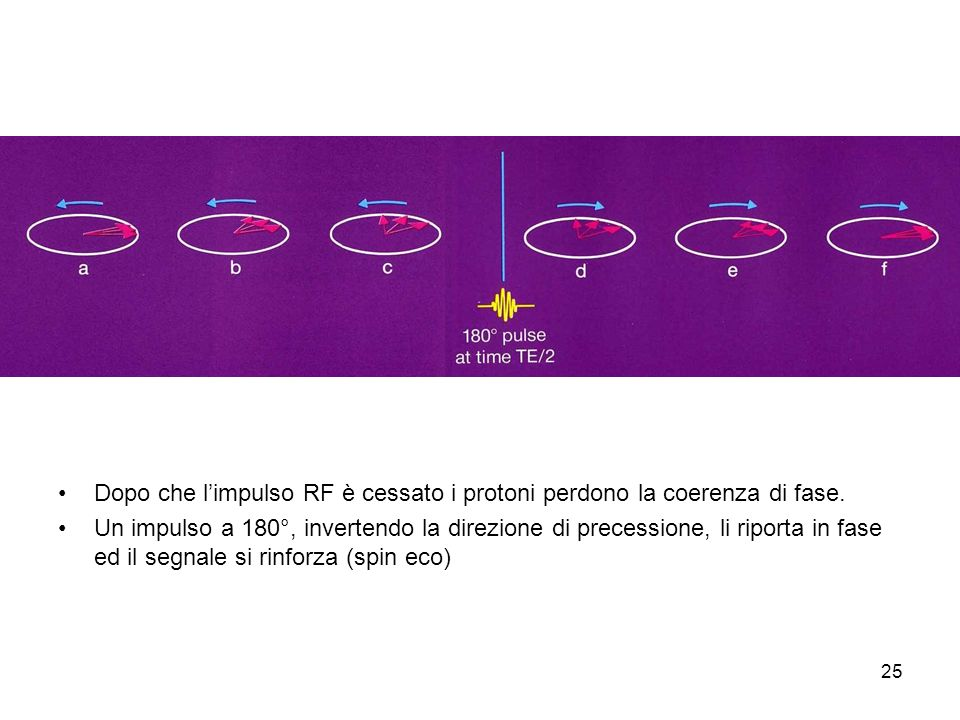 25 Dopo che limpulso RF è cessato i protoni perdono la coerenza di fase.