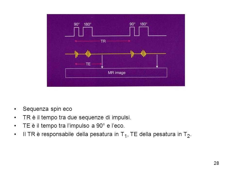 28 Sequenza spin eco TR è il tempo tra due sequenze di impulsi.
