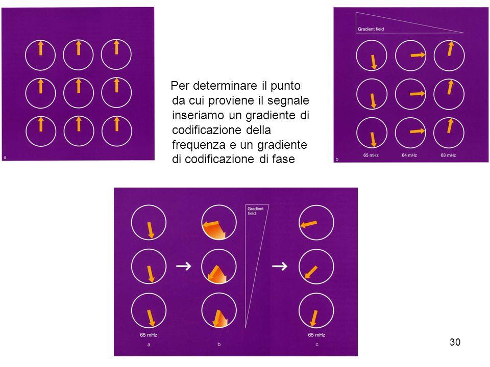 30 Per determinare il punto da cui proviene il segnale inseriamo un gradiente di codificazione della frequenza e un gradiente di codificazione di fase
