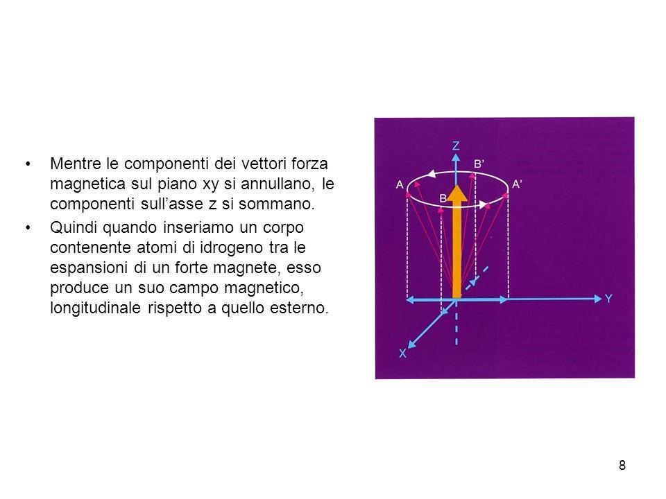 8 Mentre le componenti dei vettori forza magnetica sul piano xy si annullano, le componenti sullasse z si sommano.