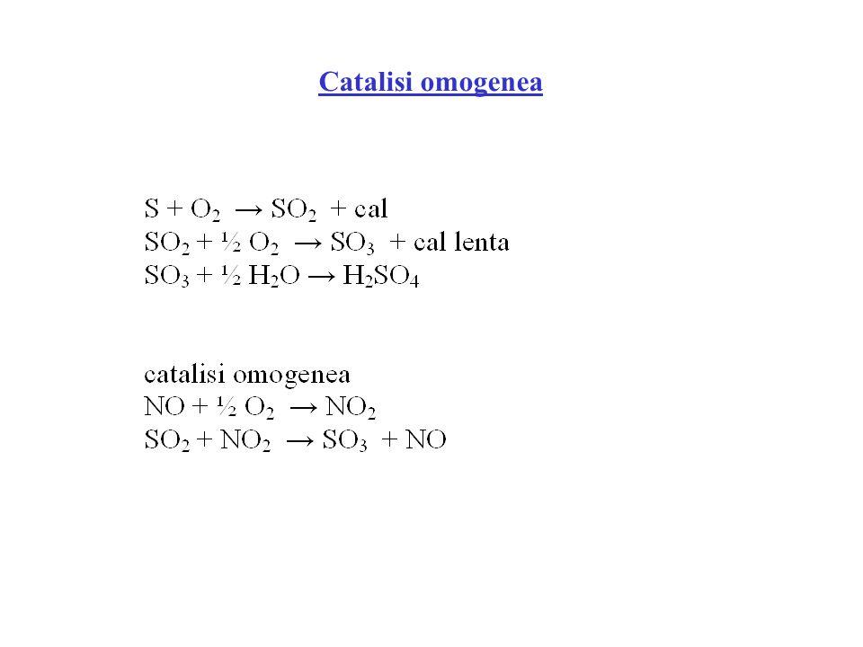 Catalisi omogenea