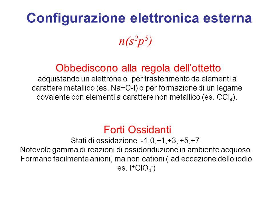 Configurazione elettronica esterna n(s 2 p 5 ) Obbediscono alla regola dellottetto acquistando un elettrone o per trasferimento da elementi a carattere metallico (es.