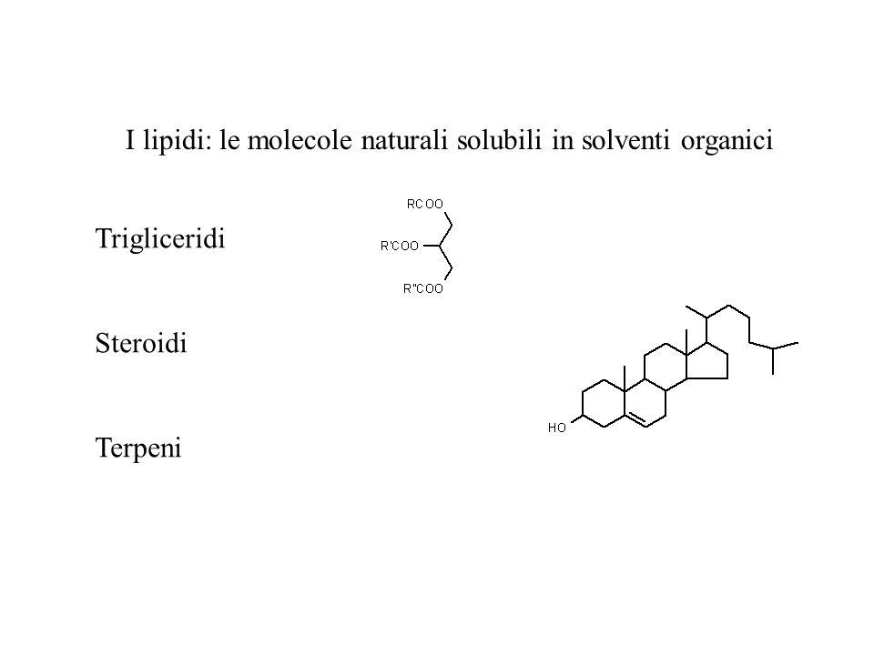 I lipidi: le molecole naturali solubili in solventi organici Trigliceridi Steroidi Terpeni