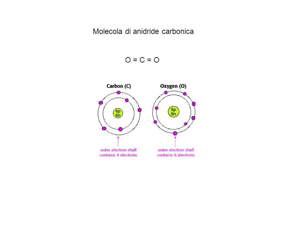O = C = O Molecola di anidride carbonica