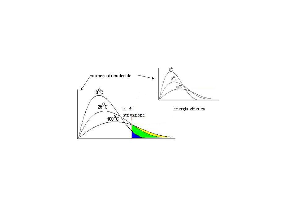 E. di attivazione Energia cinetica numero di molecole