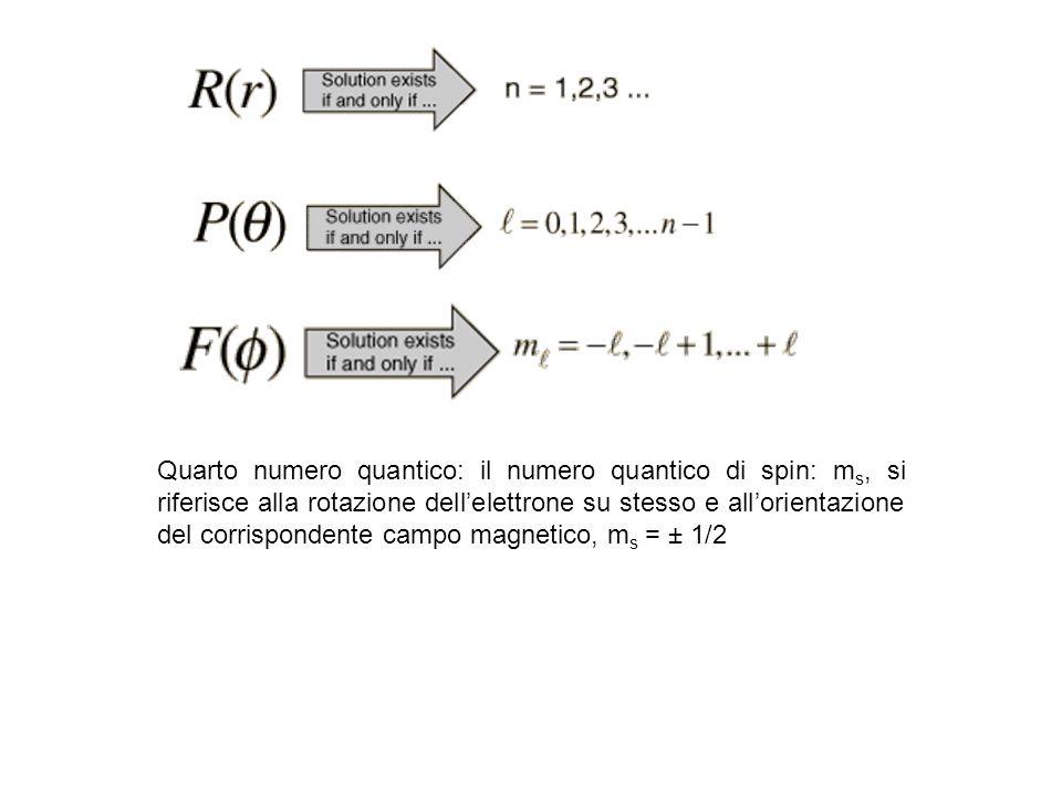 Quarto numero quantico: il numero quantico di spin: m s, si riferisce alla rotazione dellelettrone su stesso e allorientazione del corrispondente camp