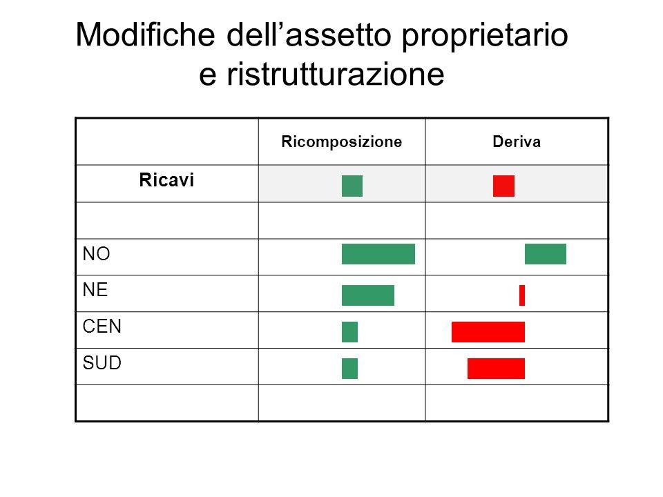 Modifiche dellassetto proprietario e ristrutturazione RicomposizioneDeriva Ricavi NO NE CEN SUD