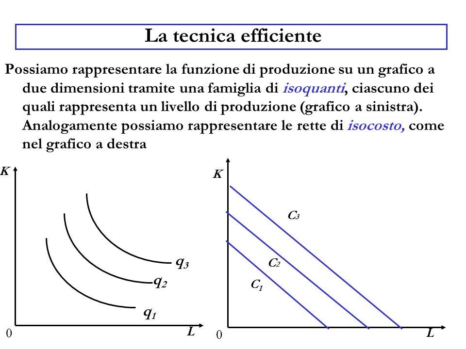 La tecnica efficiente Possiamo rappresentare la funzione di produzione su un grafico a due dimensioni tramite una famiglia di isoquanti, ciascuno dei