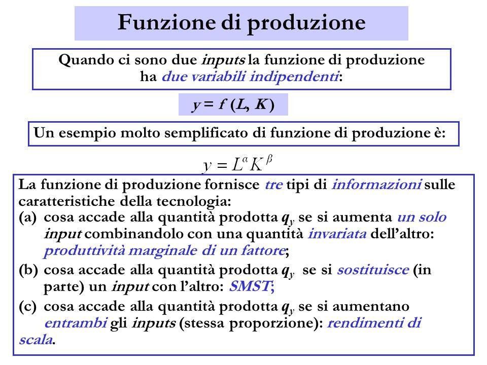 Funzione di produzione Quando ci sono due inputs la funzione di produzione ha due variabili indipendenti : Un esempio molto semplificato di funzione d
