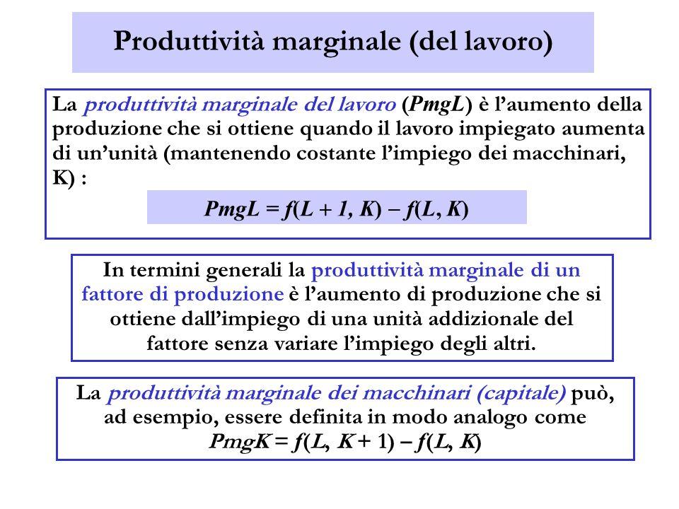 Produttività marginale (del lavoro) La produttività marginale del lavoro ( PmgL ) è laumento della produzione che si ottiene quando il lavoro impiegat