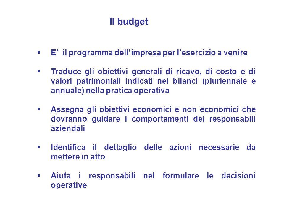 E il programma dellimpresa per lesercizio a venire Traduce gli obiettivi generali di ricavo, di costo e di valori patrimoniali indicati nei bilanci (p