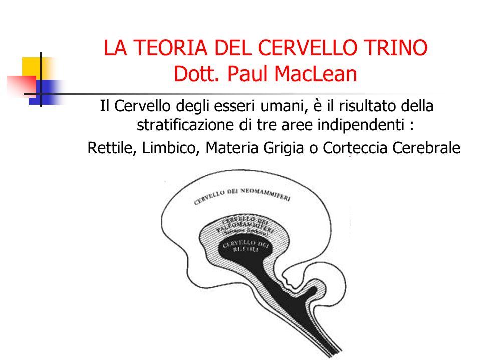 LA TEORIA DEL CERVELLO TRINO Dott. Paul MacLean Il Cervello degli esseri umani, è il risultato della stratificazione di tre aree indipendenti : Rettil