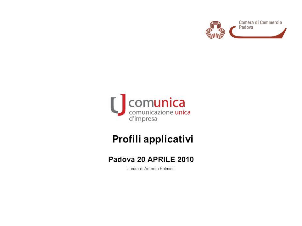 Profili applicativi Padova 20 APRILE 2010 a cura di Antonio Palmieri