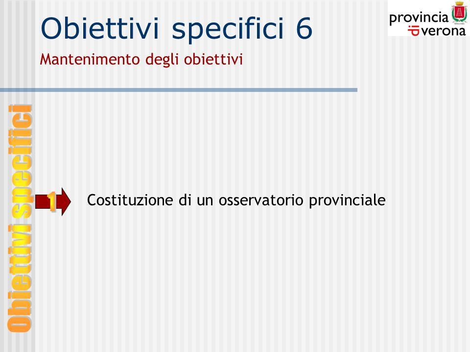 Obiettivi specifici 6 Mantenimento degli obiettivi Costituzione di un osservatorio provinciale