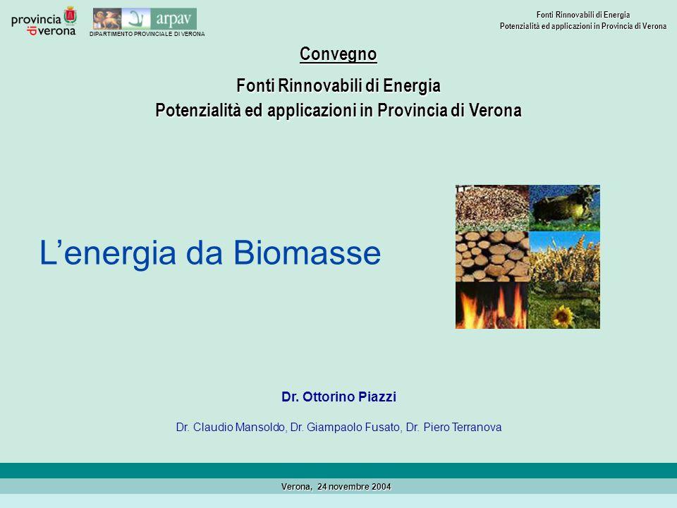 DIPARTIMENTO PROVINCIALE DI VERONA Fonti Rinnovabili di Energia Potenzialità ed applicazioni in Provincia di Verona Verona, 24 novembre 2004 Dr. Ottor