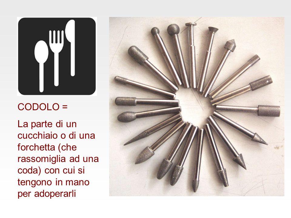 CODOLO = La parte di un cucchiaio o di una forchetta (che rassomiglia ad una coda) con cui si tengono in mano per adoperarli