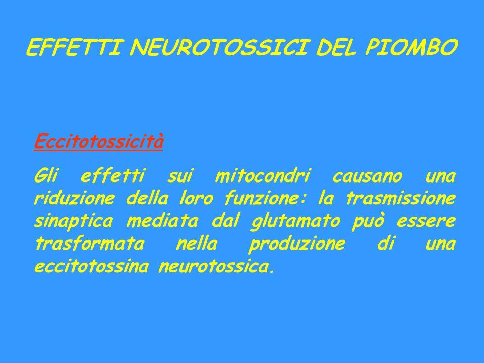 EFFETTI NEUROTOSSICI DEL PIOMBO Eccitotossicità Gli effetti sui mitocondri causano una riduzione della loro funzione: la trasmissione sinaptica mediat
