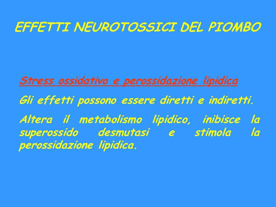 EFFETTI NEUROTOSSICI DEL PIOMBO Stress ossidativo e perossidazione lipidica Gli effetti possono essere diretti e indiretti. Altera il metabolismo lipi