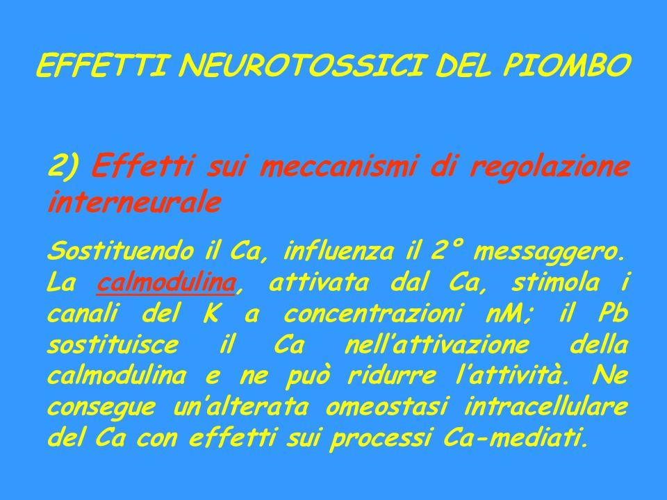 EFFETTI NEUROTOSSICI DEL PIOMBO 2) Effetti sui meccanismi di regolazione interneurale Sostituendo il Ca, influenza il 2° messaggero. La calmodulina, a