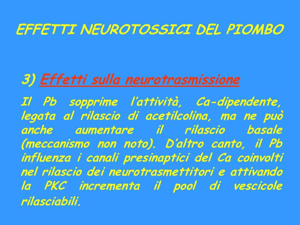 EFFETTI NEUROTOSSICI DEL PIOMBO 3) Effetti sulla neurotrasmissione Il Pb sopprime lattività, Ca-dipendente, legata al rilascio di acetilcolina, ma ne