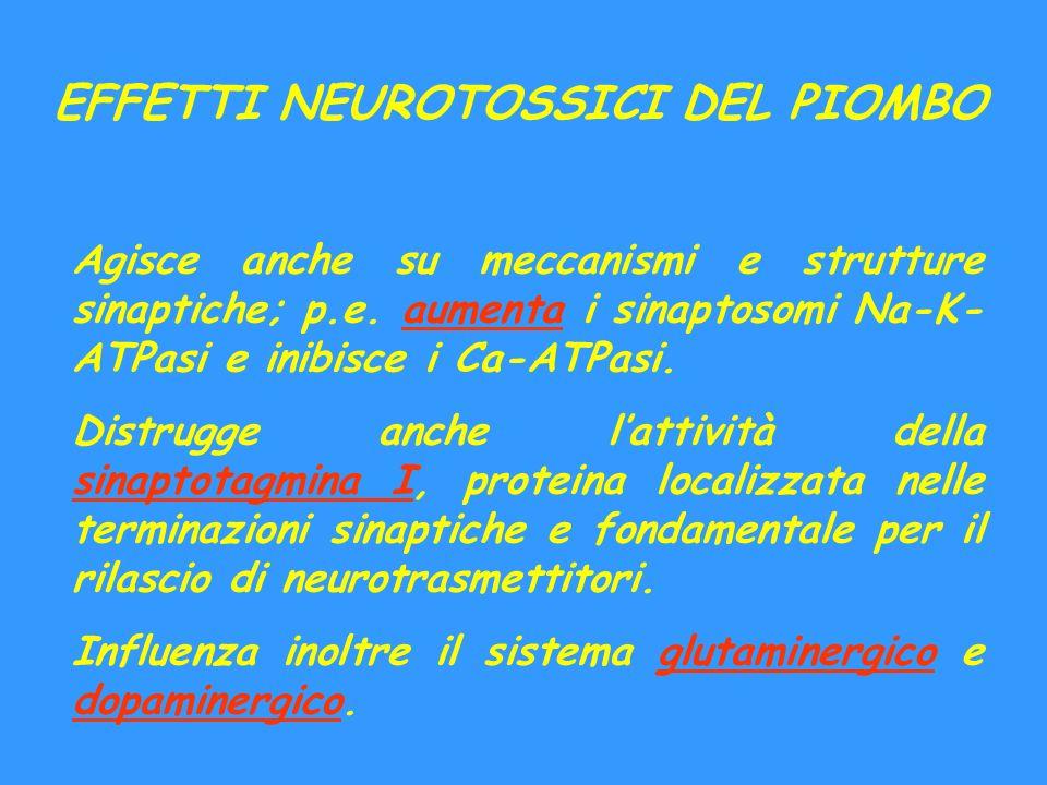 EFFETTI NEUROTOSSICI DEL PIOMBO Agisce anche su meccanismi e strutture sinaptiche; p.e. aumenta i sinaptosomi Na-K- ATPasi e inibisce i Ca-ATPasi. Dis