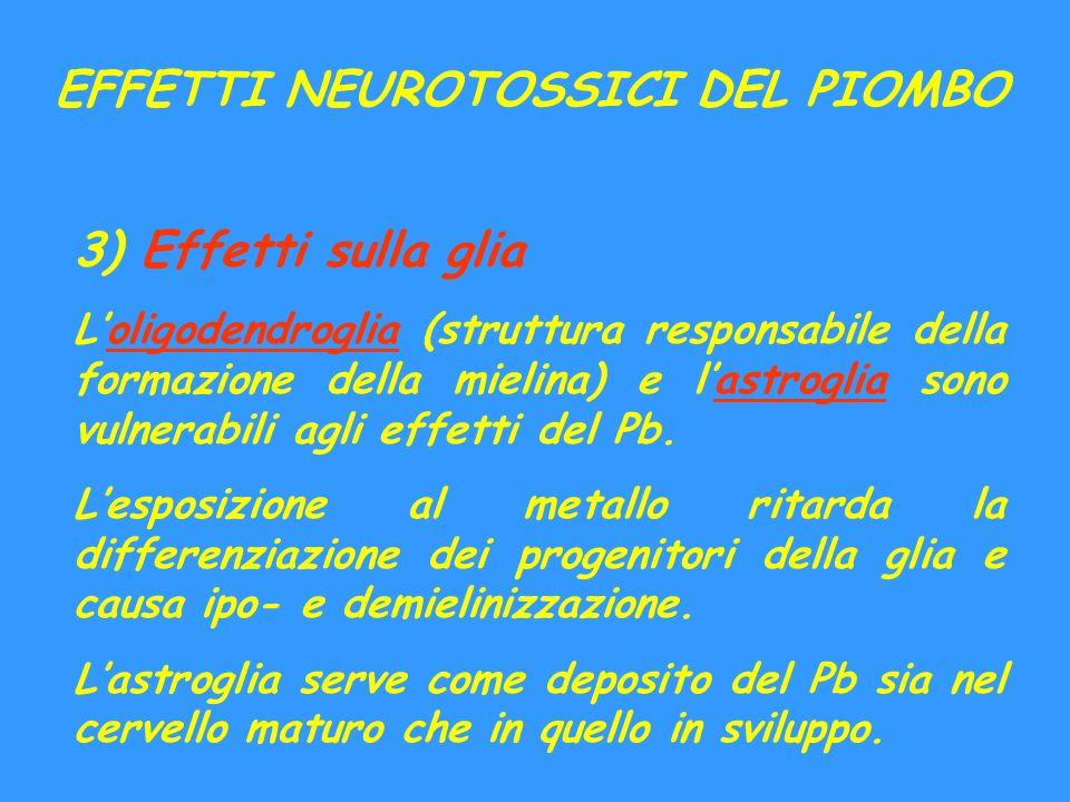 EFFETTI NEUROTOSSICI DEL PIOMBO 3) Effetti sulla glia Loligodendroglia (struttura responsabile della formazione della mielina) e lastroglia sono vulne