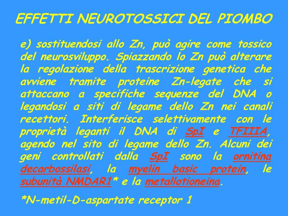 EFFETTI NEUROTOSSICI DEL PIOMBO e) sostituendosi allo Zn, può agire come tossico del neurosviluppo. Spiazzando lo Zn può alterare la regolazione della