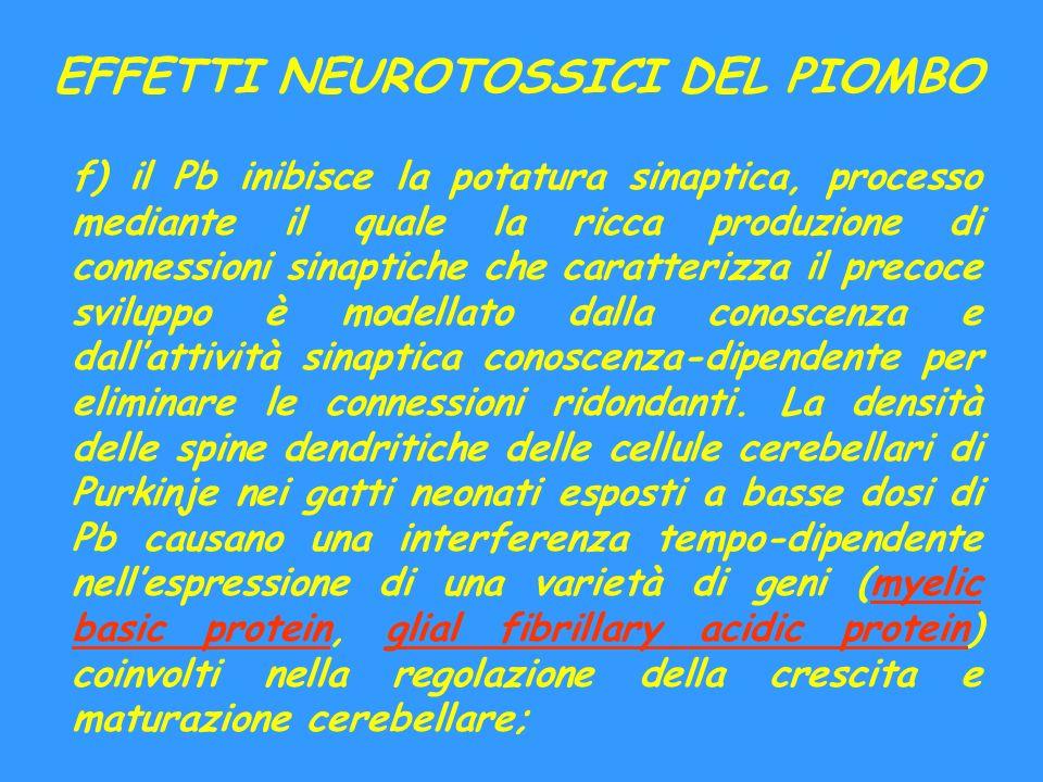 EFFETTI NEUROTOSSICI DEL PIOMBO f) il Pb inibisce la potatura sinaptica, processo mediante il quale la ricca produzione di connessioni sinaptiche che