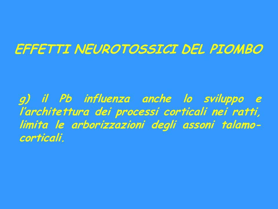 EFFETTI NEUROTOSSICI DEL PIOMBO g) il Pb influenza anche lo sviluppo e larchitettura dei processi corticali nei ratti, limita le arborizzazioni degli