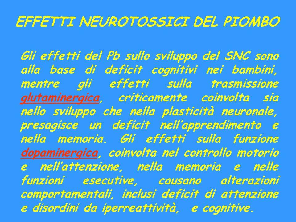 EFFETTI NEUROTOSSICI DEL PIOMBO Gli effetti del Pb sullo sviluppo del SNC sono alla base di deficit cognitivi nei bambini, mentre gli effetti sulla tr